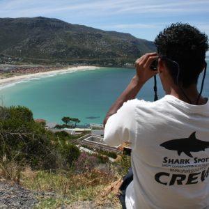 shark-spotters