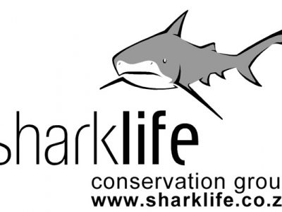 sharklife-logo-opt