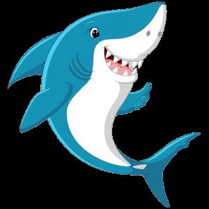 shark attacks blue wilderness