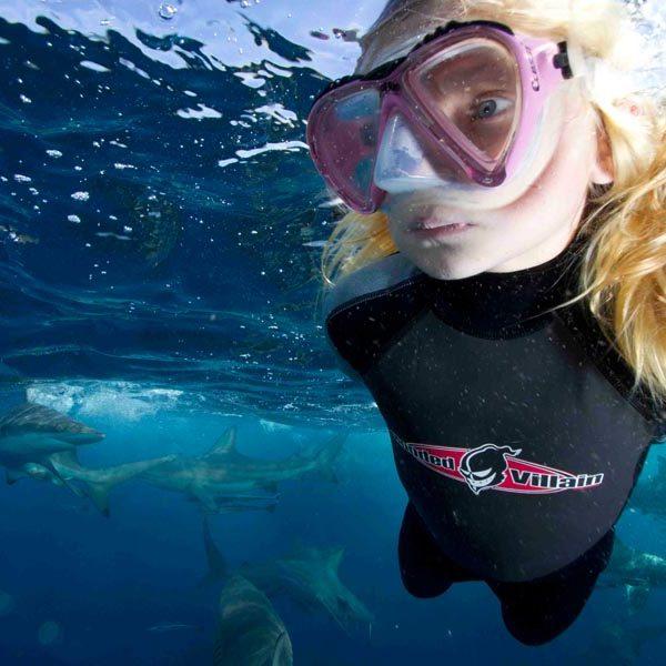Swim with sharks at aliwal shoal4