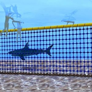 shark exclusion net