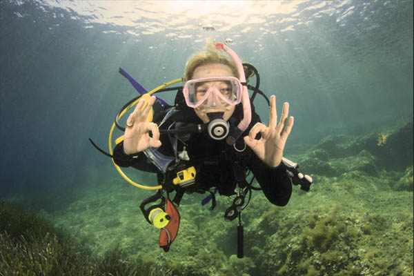 YOUR SHARK DIVE SPIRIT GUIDE - Sensible SCUBA Sam - You are up for the next great shark adventure. With your SCUBA certification and cautious confidence it is time to push the boundaries and get some serious shark diving in. With a great shark expert guide of course!